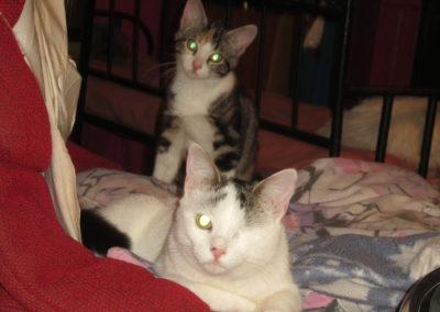 Sally et Freja